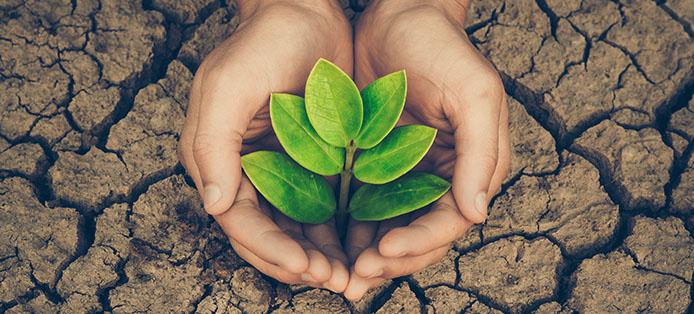 Was können wir für den Klimaschutz in Deutschland tun?